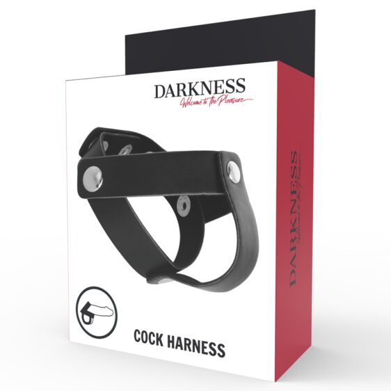 DARKNESS LEATHER C/B STRAP H-PIECE DIVIDE
