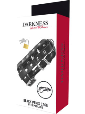 DARKNESS LEATHER CHASTITY CAGE